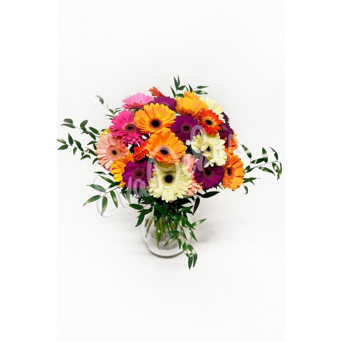 Gerbery a germini mix - Evadekor.cz rozvoz květin