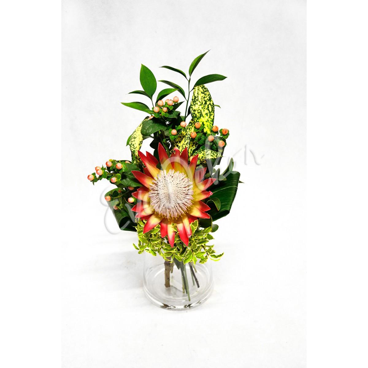 Královská protea - Evadekor.cz rozvoz květin