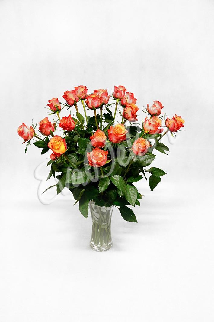 Oranžové růže - Evadekor.cz rozvoz květin