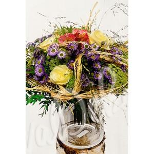 Bílá růže v poli - Evadekor.cz rozvoz květin