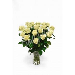 Bílé růže - Rozvoz květin EvaDekor.cz