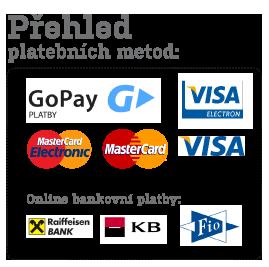 Přehled plateních metod EvaDekor.cz